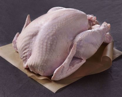 Whole, Fresh All-Natural Turkey