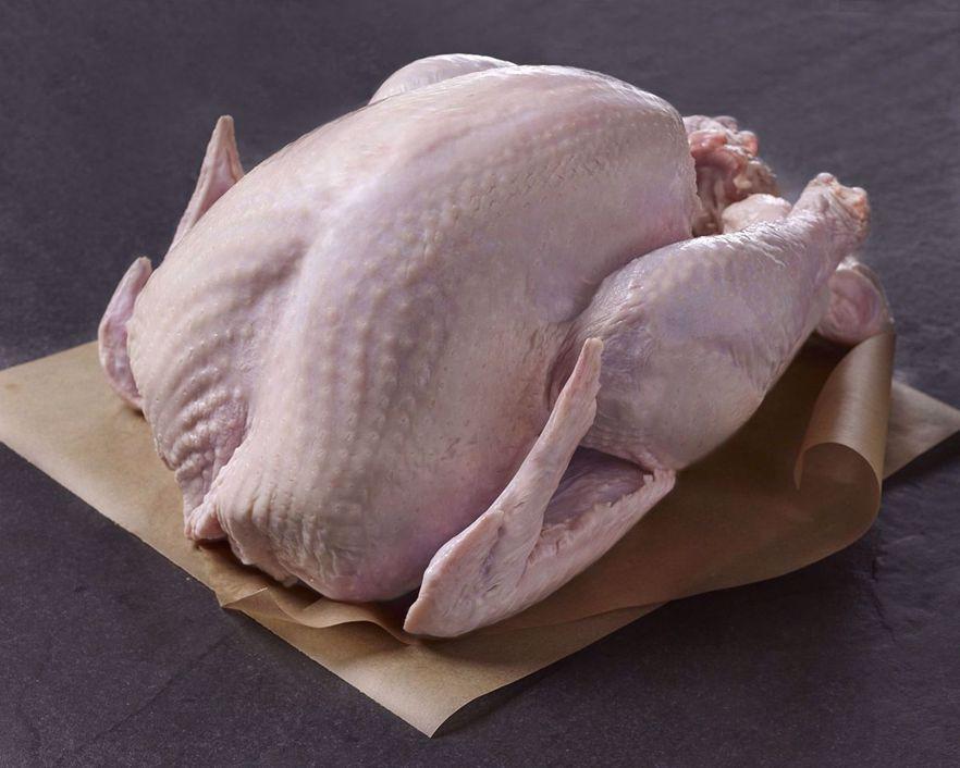 Whole, Fresh All-Natural Turkey
